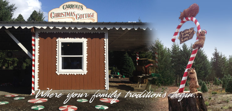 Carroll's Country Christmas Tree Farm | U-Cut or Pre-Cut Christmas ...